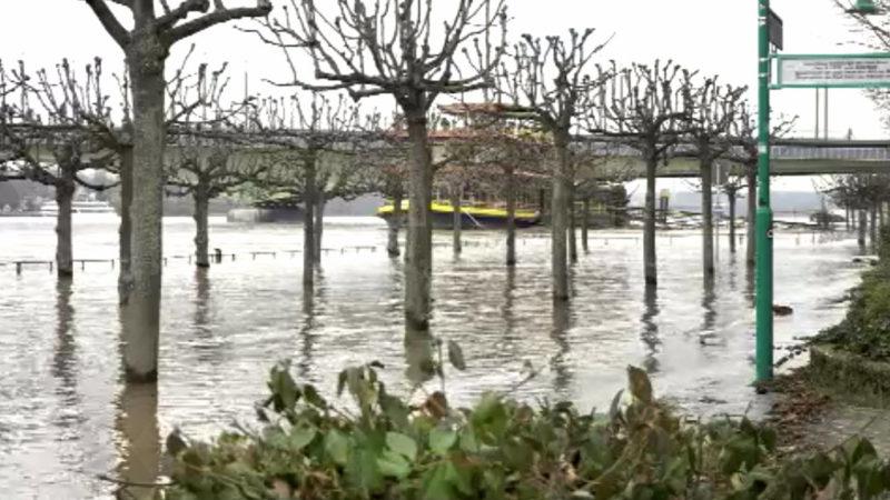 Rhein bei Köln und Bonn erreicht Höchststand (Foto: SAT.1 NRW)