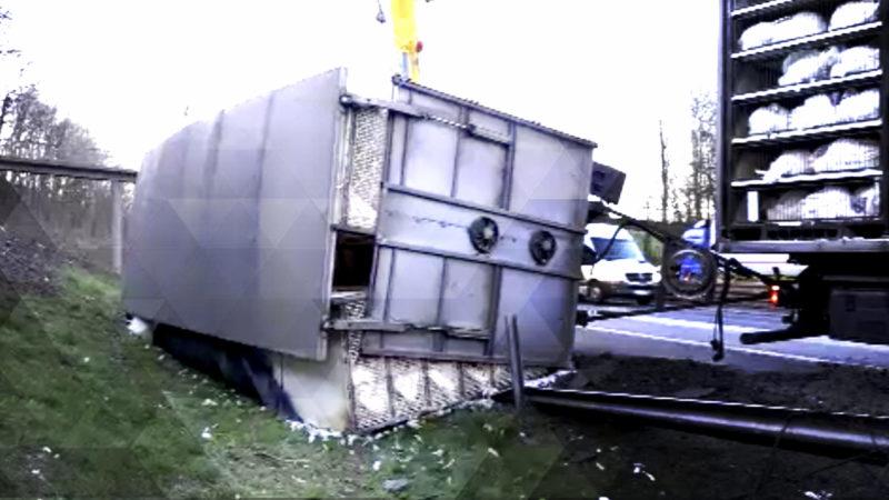 Tiertransporter umgekippt (Foto: SAT.1 NRW)