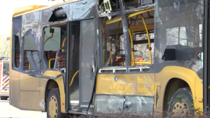 Schulbus rammt Lkw (Foto: SAT.1 NRW)
