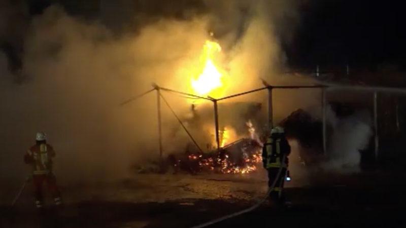 Feuerteufel im Sauerland? (Foto: SAT.1 NRW)