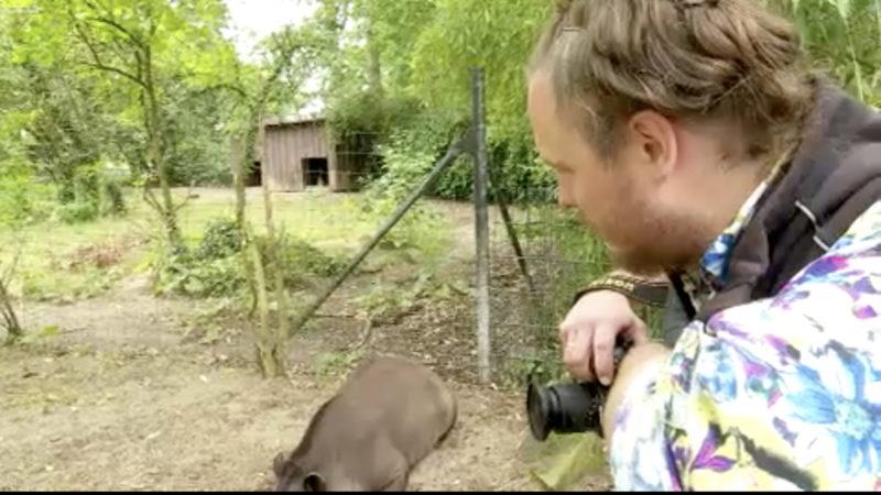 Tapir wird zum Shooting-Star (Foto: SAT.1 NRW)