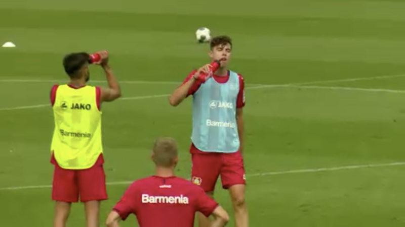 Leverkusen kurz vor Championsleague (Foto: SAT.1 NRW)