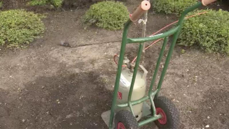 Rentner verursacht Feuer bei Garten-Arbeit (Foto: SAT.1 NRW)