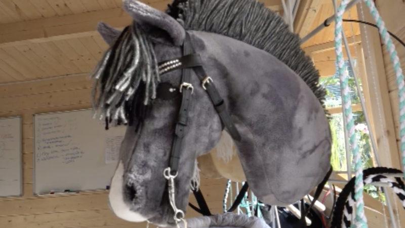Hobbyhorsing (Foto: SAT.1 NRW)