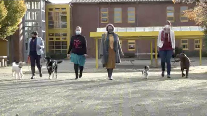 Therapiehunde helfen in der Schule (Foto: SAT.1 NRW)