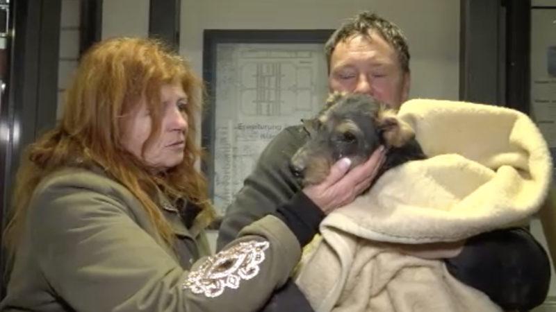 Hund Diego aus Dachsbau gerettet (Foto: SAT.1 NRW)