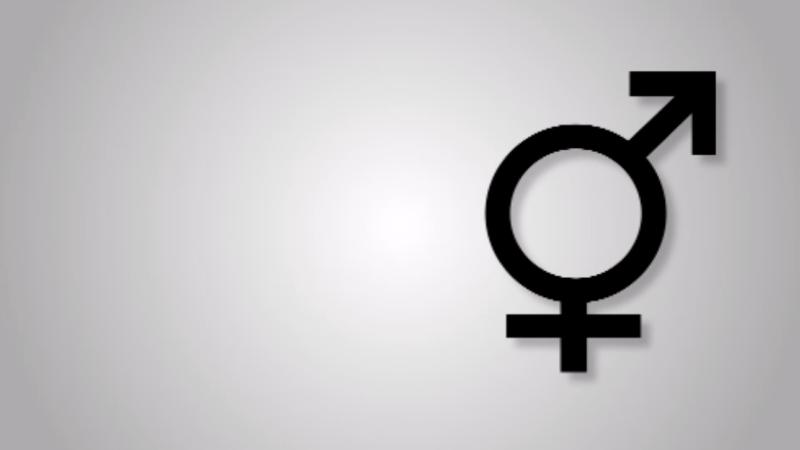 Verbietet Kreis Lippe Gender-Sternchen? (Foto: SAT.1 NRW)