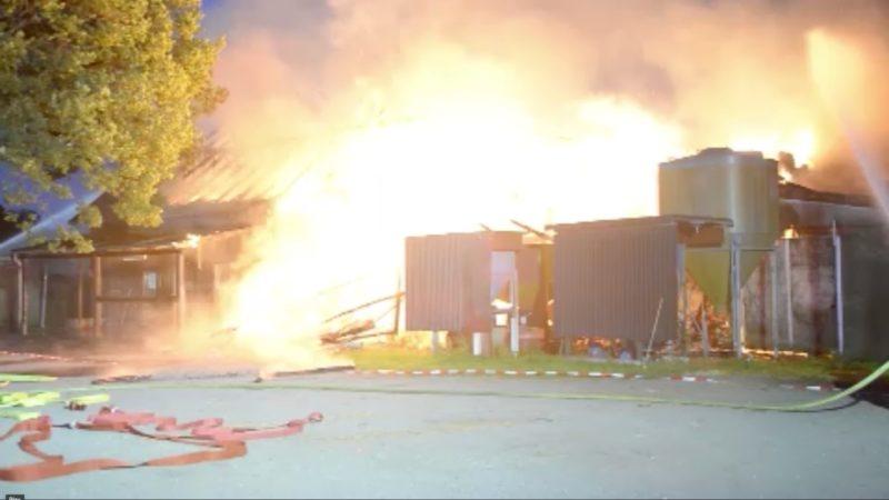 Scheune in Rheda-Wiedenbrück abgebrannt (Foto: SAT.1 NRW)
