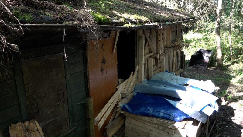 Tierquälerei in Horrorhütte (Foto: SAT.1 NRW)