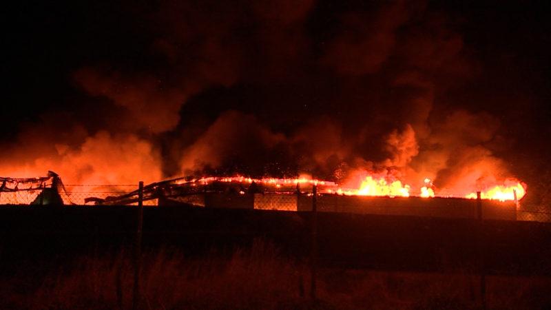 Feuer in Fabrikhalle (Foto: SAT.1 NRW)